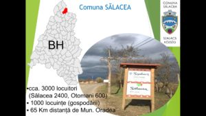 Salacea 2